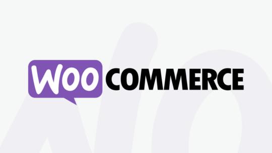 Køb Hasighedsoptimering woocommerce til dig, der driver sælger online